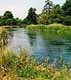 Where to fish in Berkshire. River Kennet